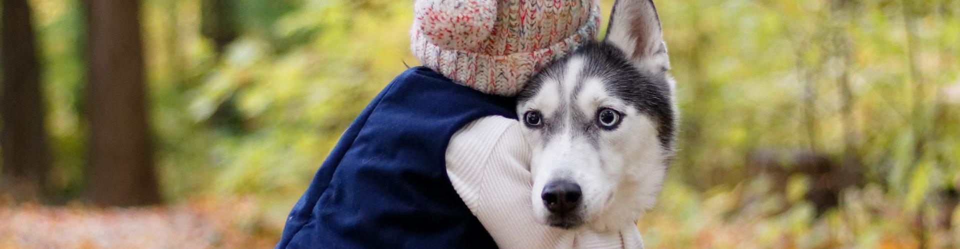Jong kind gewond door toedoen hond | LetselPro